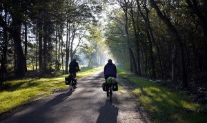 Bike Riding Inspiration